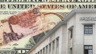 صورة سعر صرف العملات الأجنبية اليوم الأحد 2 أغسطس 2020 مقابل الجنيه المصري