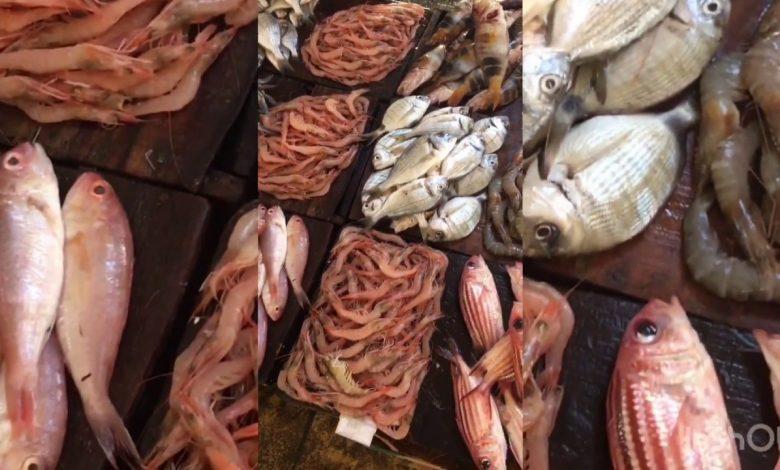 أسعار اللحوم و الأسماك و الدواجن في الأسواق المصرية اليوم الأحد 21 فبراير 2021