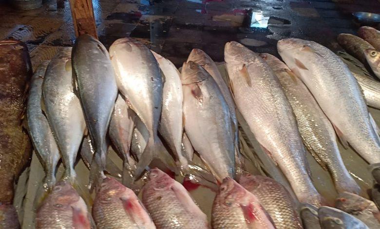 أسعار اللحوم و الأسماك و الدواجن في الأسواق المصرية اليوم الأربعاء 3 مارس 2021
