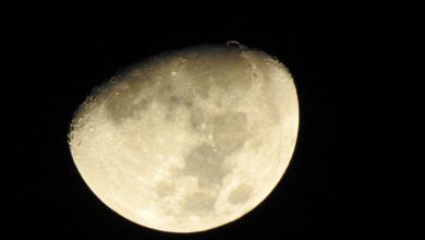 صورة الإشعاعات على القمر ضعف ما تتعرض له المحطة الدولية