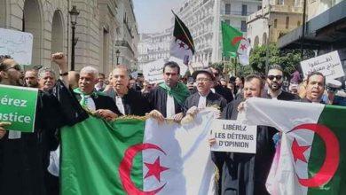 صورة محامو الجزائر يقاطعون القضاء مطالبين باحترام الحق في الدفاع
